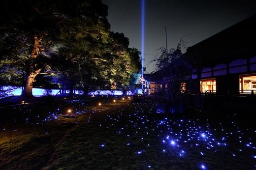 shorenin-koyo-lightup.jpg